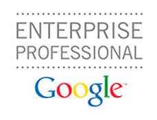google enterprise search professional certification about